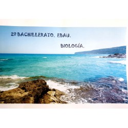 BIOLOGÍA Y GEOLOGÍA. 2º BACH.